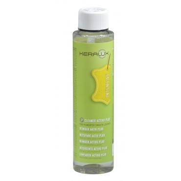 NETTOYANT DETACHANT ACTIVE PLUS 250 ML